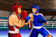 Boxare som slåss i cirkel Arkivfoton