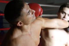 boxare två Arkivbilder