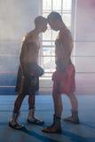 Boxareanseendeframsida - till - framsida i boxningsring Arkivfoton