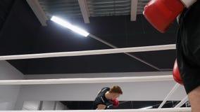 Boxareman som diskuterar utbildningsplan på boxningsringen i kampklubba Mankämpe i röda boxas handskar som talar med personligt stock video