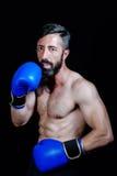 Boxarestående i halvabysten, blickar på kameran arkivfoto