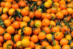 Boxas av apelsiner royaltyfri bild