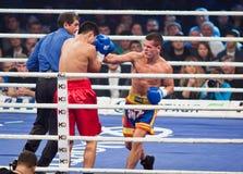 Boxas kamp i Palats av sportar i Kyiv, Ukraina Arkivbilder