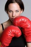 boxas sexig kvinna Royaltyfri Bild