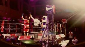 boxas slagsmål Fotografering för Bildbyråer
