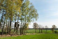 Boxas ställningen på kanten av en skog Arkivbilder