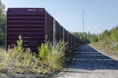 Boxcars изгибая в расстояние Стоковая Фотография