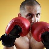 Boxe Photographie stock libre de droits