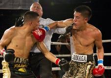 Boxe amateur et professionnelle photos stock