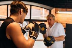 Boxe d'entraînement de deux mâles image libre de droits