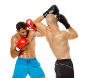 Boxe d'entraînement de Kickboxers sur le blanc Image stock