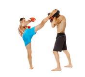 Boxe d'entraînement de Kickboxers sur le blanc Photos stock