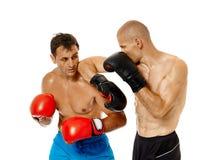 Boxe d'entraînement de Kickboxers sur le blanc Images stock