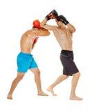 Boxe d'entraînement de Kickboxers sur le blanc Photos libres de droits