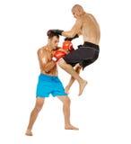 Boxe d'entraînement de Kickboxers sur le blanc Images libres de droits