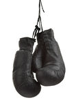 Boxe-gant Photographie stock