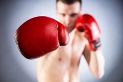 Boxe. Plan rapproché de gant de combattants Images libres de droits