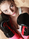 Boxe sportive convenable de femme Photo libre de droits