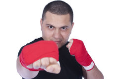 Boxeador Fotos de archivo libres de regalías