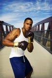 Boxeador Fotografía de archivo libre de regalías