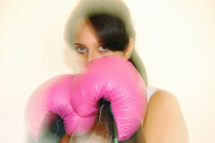Boxeador Fotos de archivo