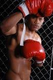 Boxeador. Fotos de archivo libres de regalías