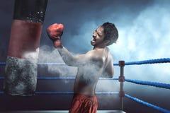 Boxeador asiático del hombre que practica con el saco de arena Fotografía de archivo