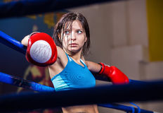 Boxeador de la muchacha en anillo de boxeo Fotografía de archivo