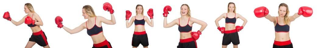 Boxeador de la mujer en el fondo blanco foto de archivo libre de regalías