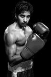 Boxeador de sexo masculino Imágenes de archivo libres de regalías