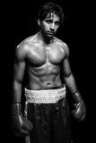 Boxeador de sexo masculino Fotos de archivo
