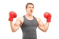 Boxeador de sexo masculino con los guantes de boxeo rojos que gesticula felicidad Imagen de archivo libre de regalías