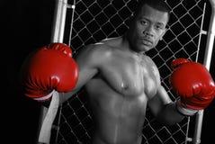 Boxeador del afroamericano. Fotos de archivo