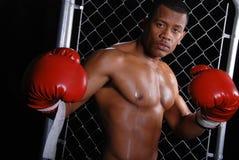 Boxeador del afroamericano. Fotografía de archivo libre de regalías