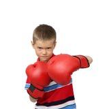 Boxeador del muchacho Foto de archivo libre de regalías