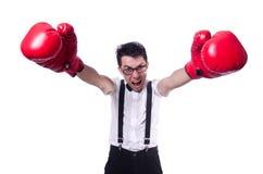 Boxeador divertido Imagenes de archivo
