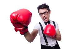 Boxeador divertido Foto de archivo libre de regalías