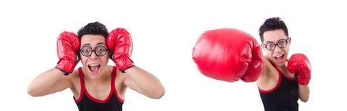 Boxeador divertido aislado en el fondo blanco imagen de archivo libre de regalías