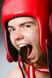 Boxeador divertido con ganar Imágenes de archivo libres de regalías
