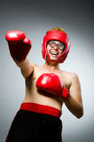 Boxeador divertido contra Imágenes de archivo libres de regalías