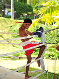 Boxeador en el concetration 2 Imagen de archivo libre de regalías