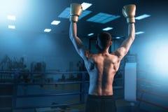 Boxeador en manos de los guantes para arriba en el anillo, visión trasera fotografía de archivo libre de regalías