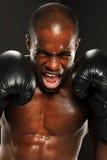 Boxeador joven del afroamericano que grita Fotografía de archivo libre de regalías