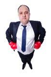 Boxeador joven del hombre de negocios aislado Fotos de archivo libres de regalías
