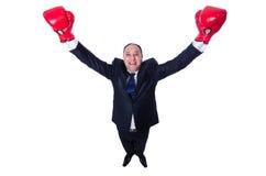 Boxeador joven del hombre de negocios aislado Foto de archivo