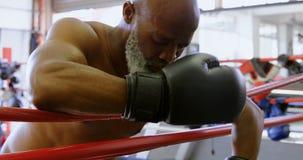 Boxeador mayor que se inclina en el ring de boxeo 4k almacen de video