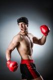 Boxeador muscular imagenes de archivo