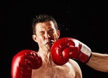 Boxeador que es golpeado Fotos de archivo