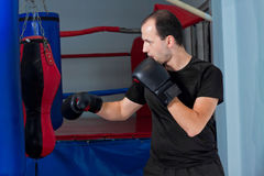 Boxeador que se prepara para perforar Fotos de archivo libres de regalías