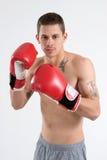 Boxeador tatuado fotos de archivo libres de regalías